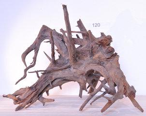 Corbo-Root