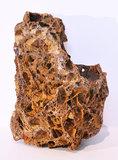 MAPLE LEAF ROCK (1 TOT 1,5 KG)_