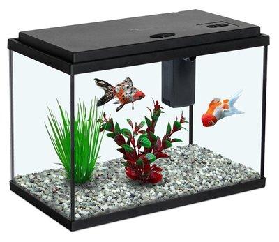 AQUATLANTIS FUNNY FISH 35