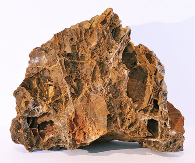 MAPLE LEAF ROCK (1 TOT 1,5 KG)