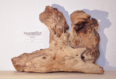 Mopani hout 017 Small