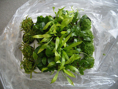 Restplantenpakket