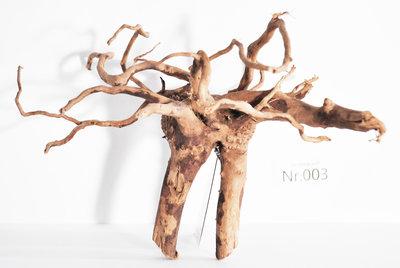 Spiderwood 003