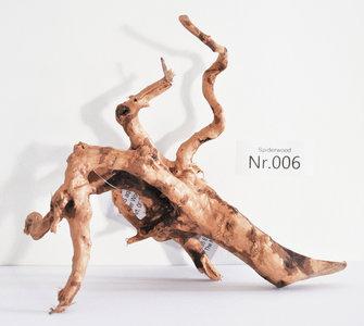 Spiderwood 006