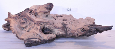 XXL Mopani hout 121