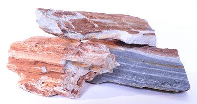 Versteend hout DOOS 20 KG.